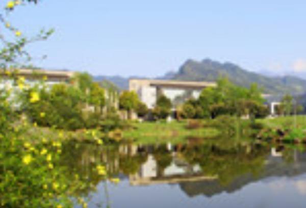 四川成都东软学院是哪一年被升为本科院校的?