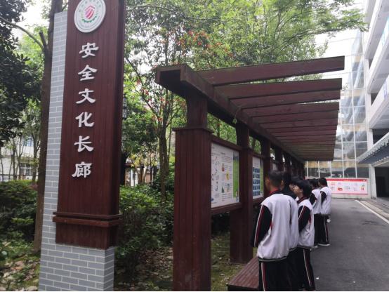 2011年四川大学锦城学院艺术类专业招生简章